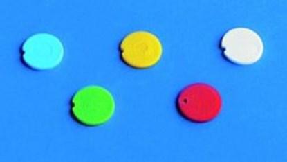Slika za cover insert, pp, yellow