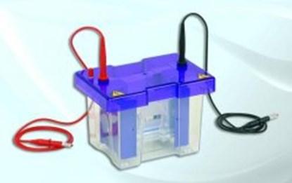 Slika za comb with 12 sample