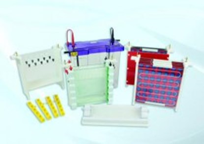 Slika za comb with 48 samples
