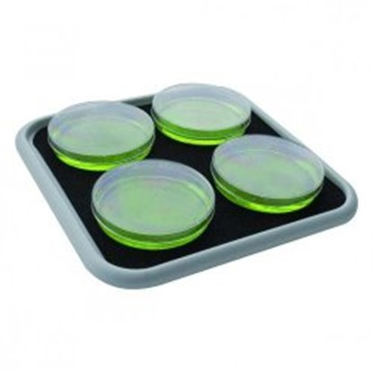 Slika za Accessories for Shaking Incubators ES-20 / ES-80