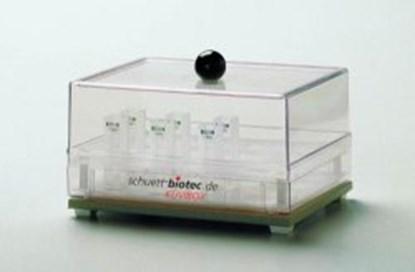 Slika za cuvet storage container kšvibox 2