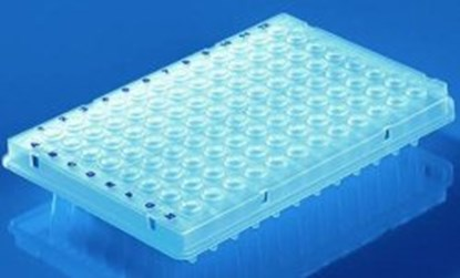 Slika za pcr plates 96-well, 0.2 ml