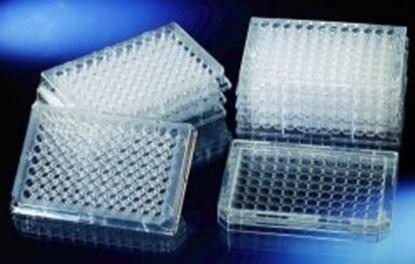 Slika za f96-microwell platten, transparent